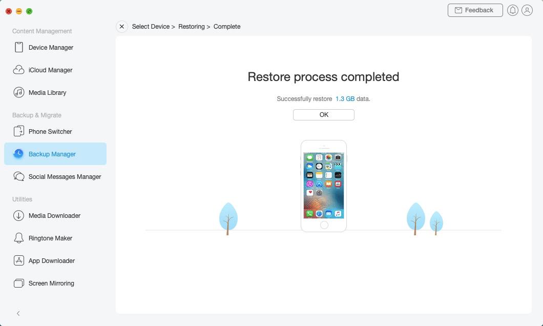 Restore Backup - 7