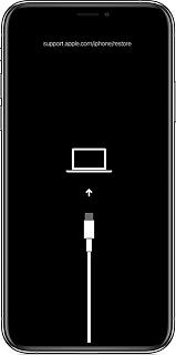 أعد تشغيل iPhone في وضع الاسترداد