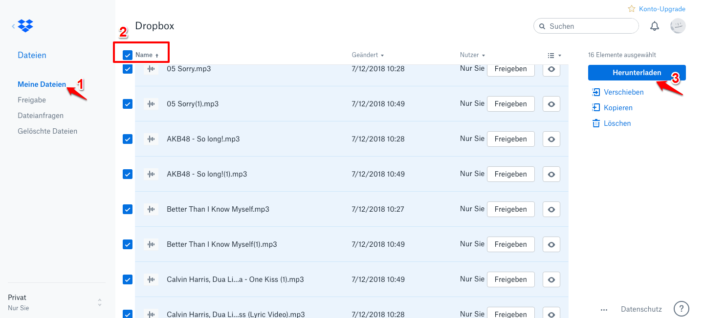 Dropbox Ordner herunterladen – Von Dropbox-Website
