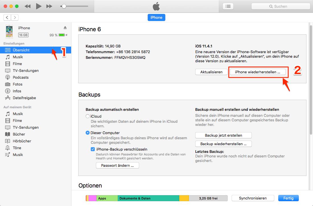 iOS 12/11 Bildschirmaufnahme auf iPhone kein Ton - wiederherstellen