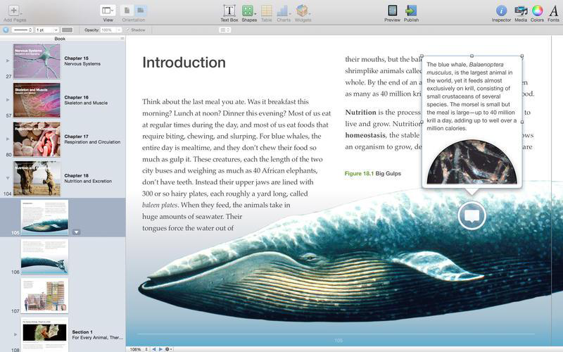 Top App für Mac: iBooks Author