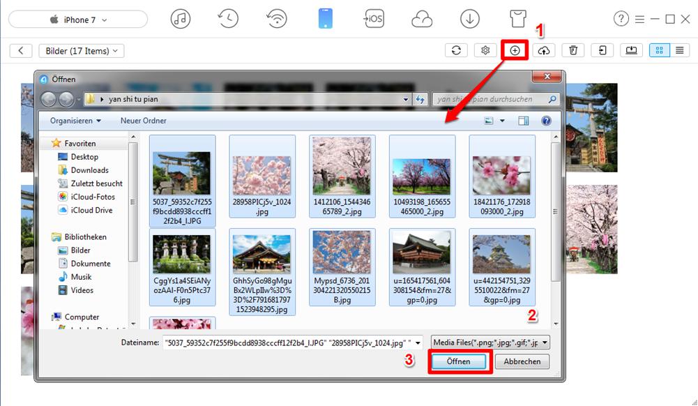 Bilder vom Computer auf iPhone X/8/7 (Plus) übertragen - Schritt 3