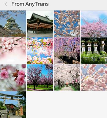 Bilder vom PC auf Android transportieren