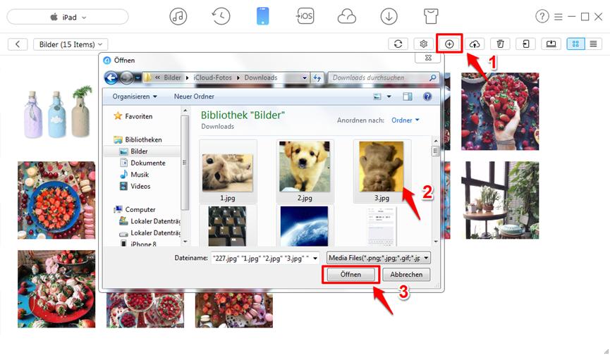 Dateien vom PC auf iPad ohne iTunes – Fotos übertragen