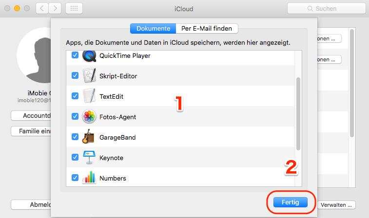 Daten auf dem Mac in iCloud speichern