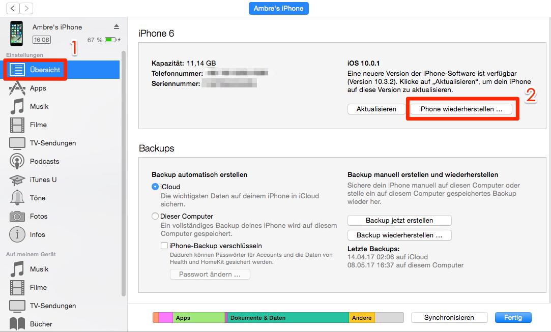 iOS-Gerät nach dem Downgrade wiederherstellen – Schritt 5