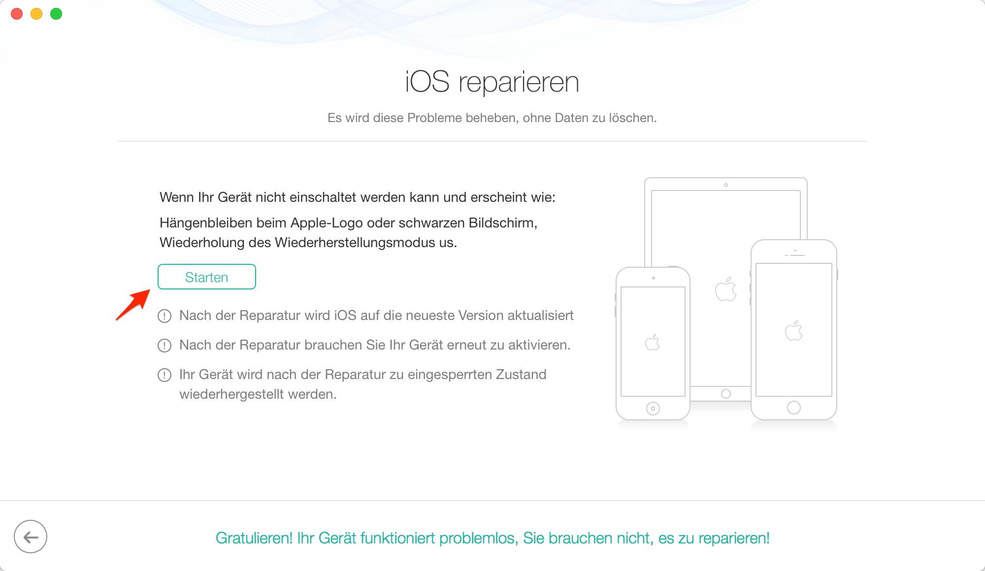"""Fehler """"iPhone startet nicht"""" mit PhoneRescue schnell fixieren – Schritt 3"""