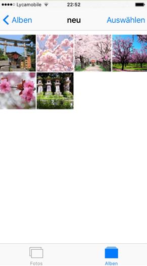 iPhone leicht Fotoalbum erstellen