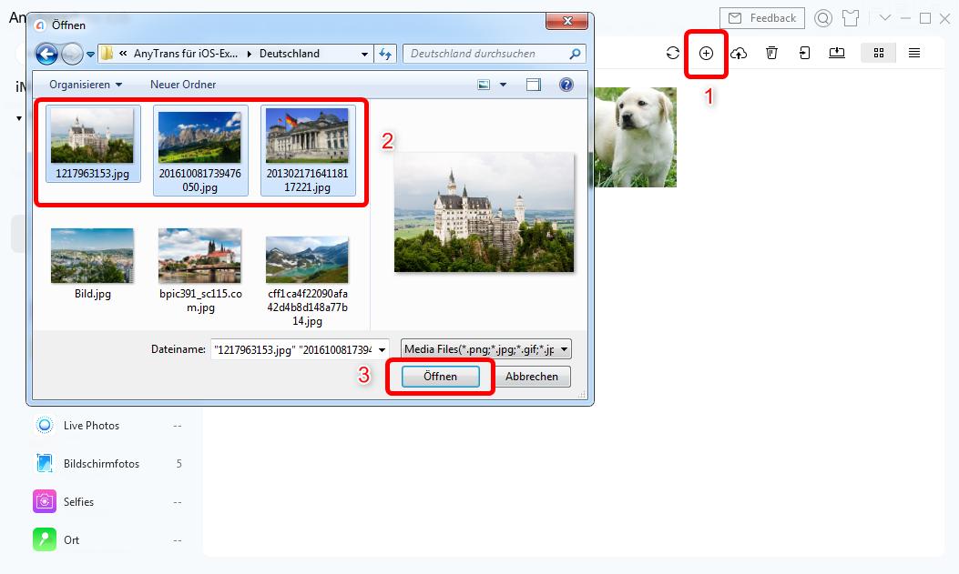 fotos-auf-iphone-exportieren