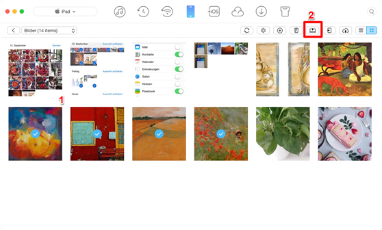 Fotos von iPad auf Mac ohne iPhoto übertragen – Schritt 3