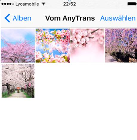 Bilder vom MacBook Pro/Air auf iPhone übertragen