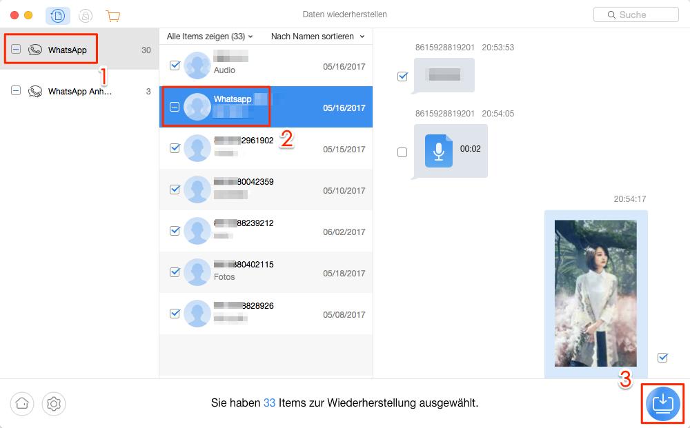Gelöschte WhatsApp-Daten widerherstellen – Schritt 3