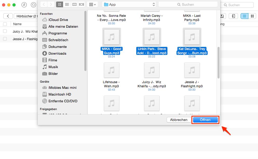 Ohne iTunes! Hörbuch auf iPod sichern – Schritt 3