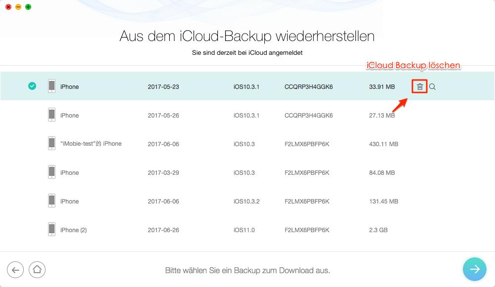 1 Klick! iCloud Backup löschen - Schritt 3