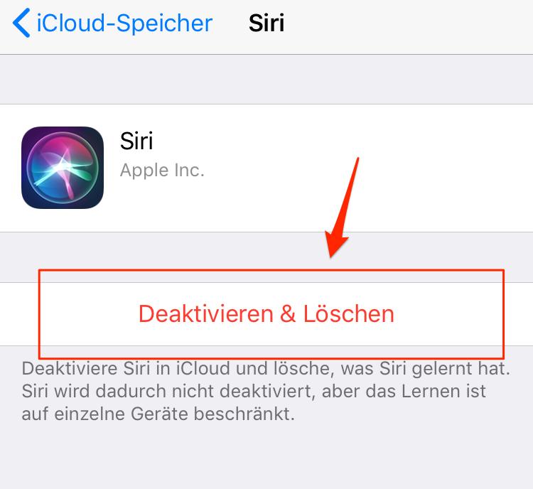 """iCloud Daten löschen - in """"Einstellungen"""""""