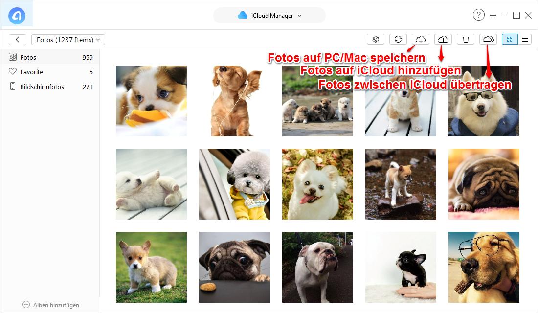 iCloud-Fotomediathek lädt nicht – so beheben