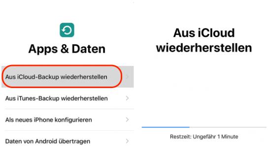 iCloud Fotos zurück auf neues iPhone XS/XR bekommen