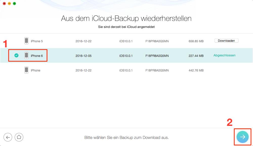 iCloud Backup auswählen und herunterladen - Schritt 3