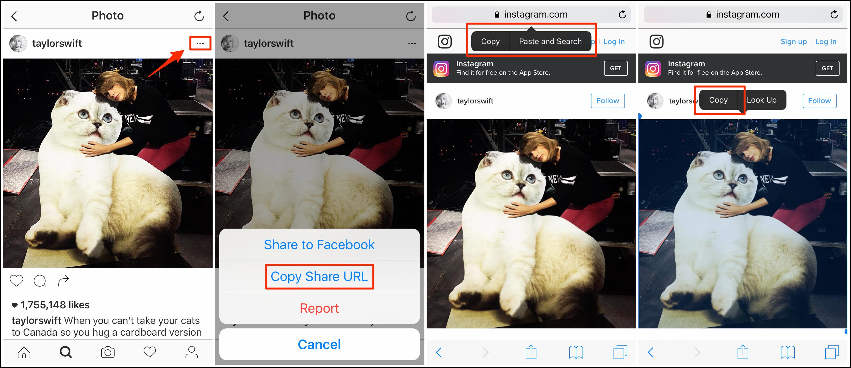 Instagram Bilder & Fotos speichern - URL kopieren