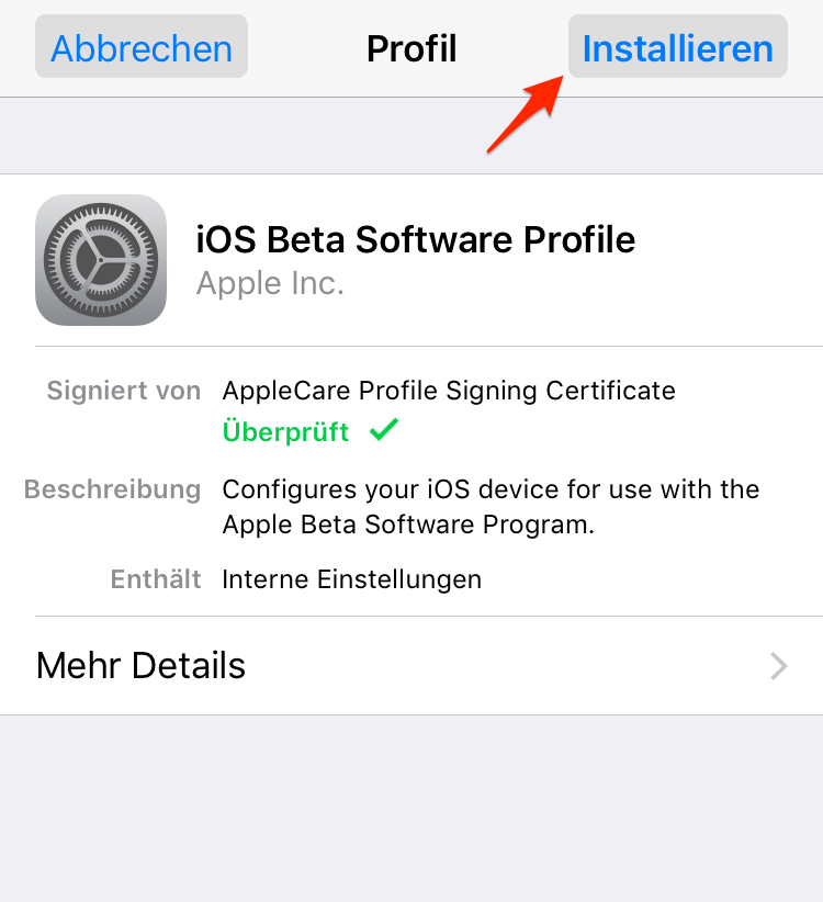 iOS Beta Download & Installation - Schritt 4