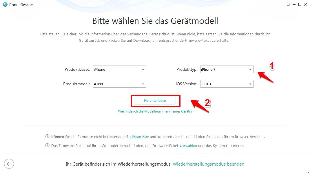 iOS System Recovery – Infos für iOS-Gerät ausfüllen