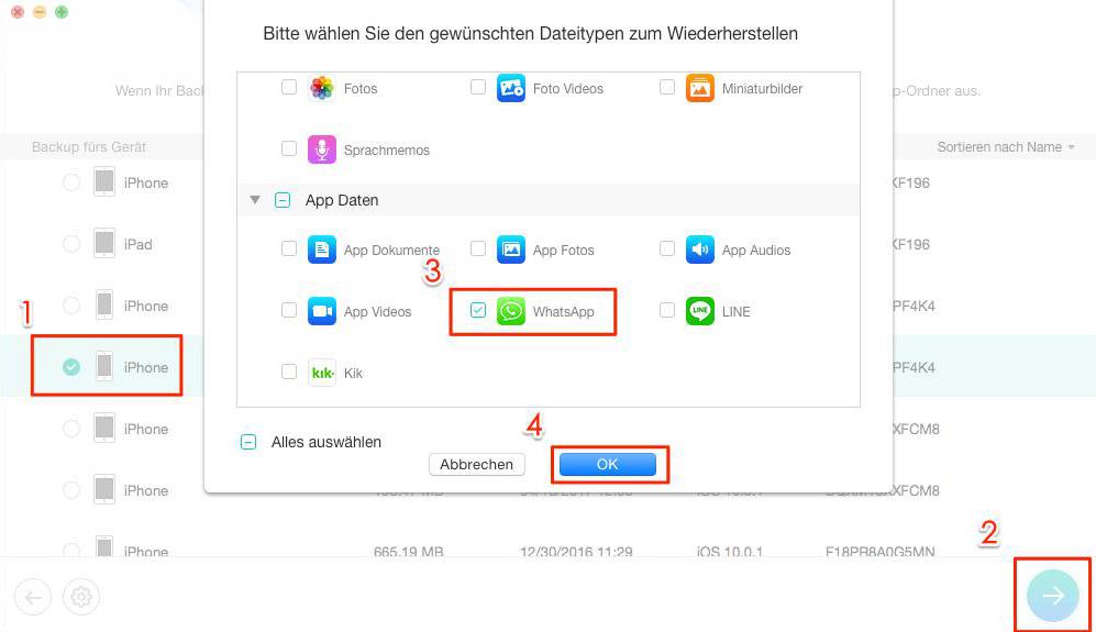 iOS 11 WhatsApp Probleme lösen – Schritt 2