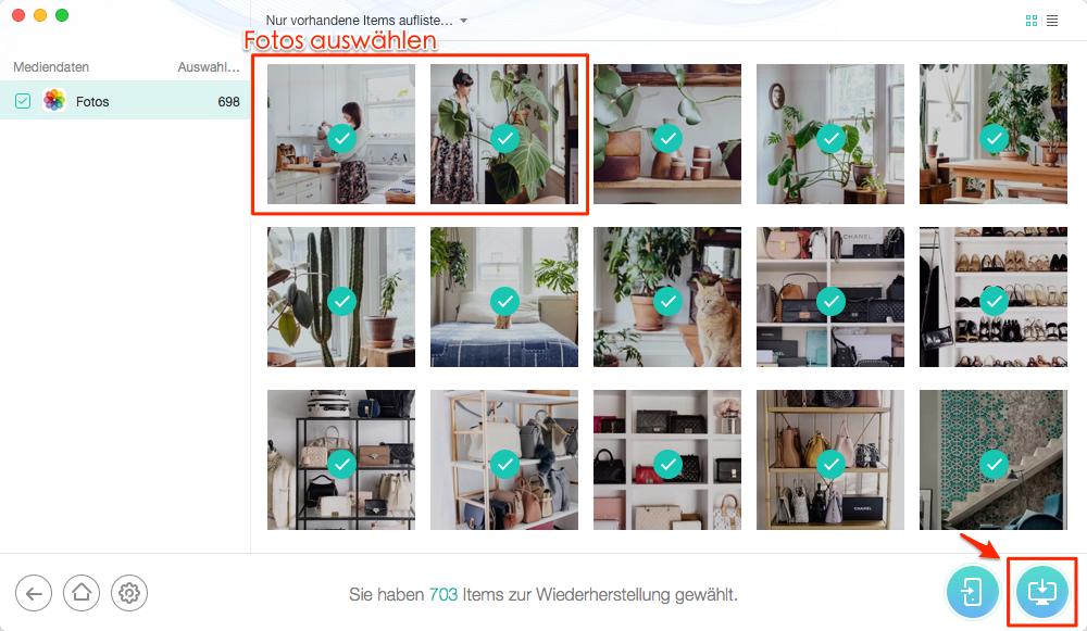 Schnell! iPad gelöschte Fotos wiederherstellen – Schritt 3