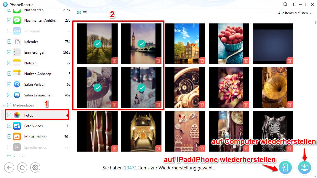 iPad lässt sich nicht wiederherstellen – Dateien mit PhoneRescue abrufen