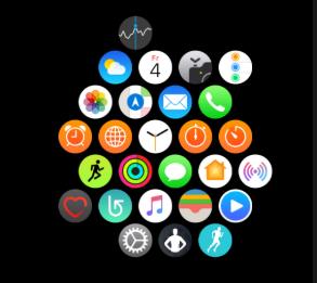 wie kann man iPhone/iPad Apps sortieren