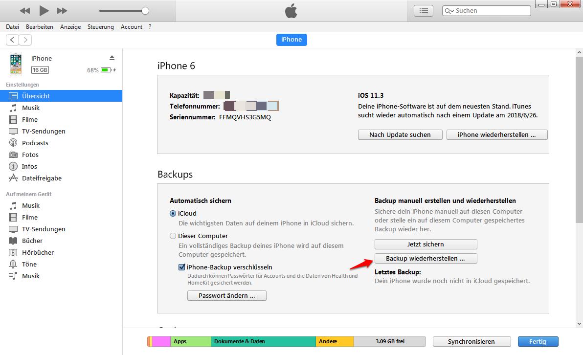 iPhone Backup wiederherstellen geht nicht – Daten mit iTunes wiederherstellen