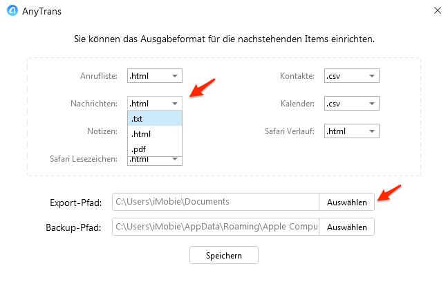 Format einstellen und Export-Pfad auswählen - Schritt 4