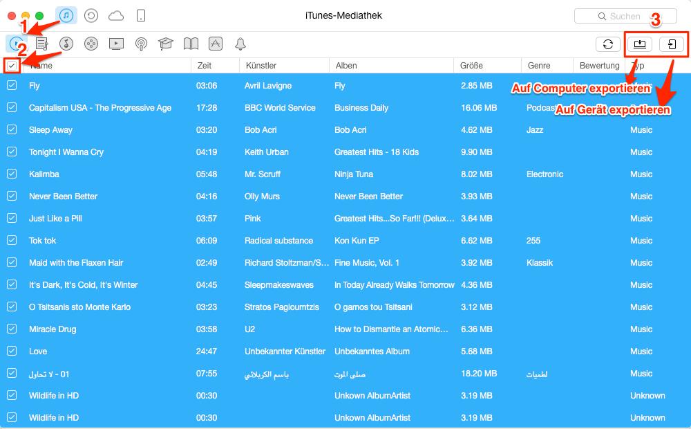 iTunes Mediathek auf Computer/iGerät übertragen – Schritt 2
