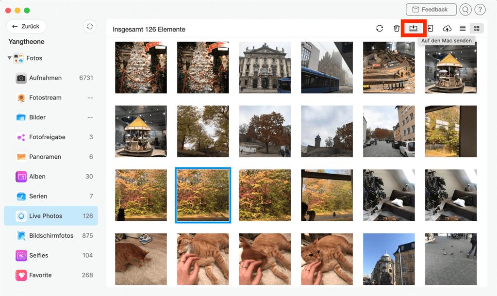 live-fotos-auf-mac-senden