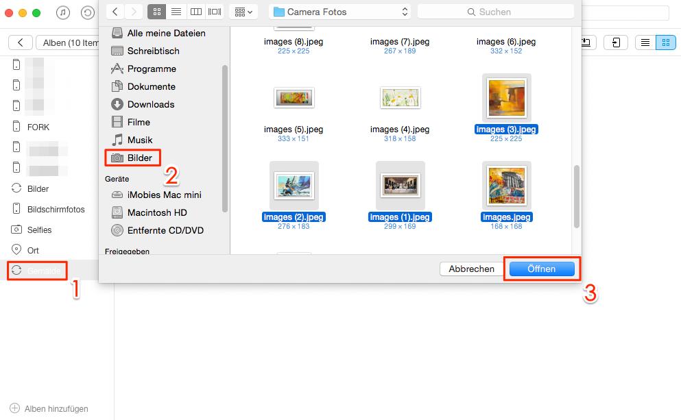 Mit AnyTrans kann man Album erstellen und Fotos hinzufügen - Schritt 2