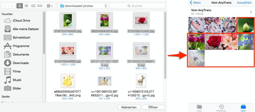 Erfolgreich übertragen – iTunes Fotos synchronisiert geht nicht beheben
