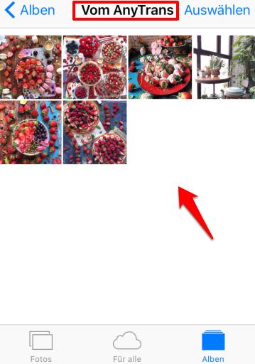Bilder vom Laptop auf iPhone ohne iTunes
