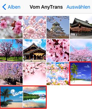 Fotos vom Computer auf iPad übertragen