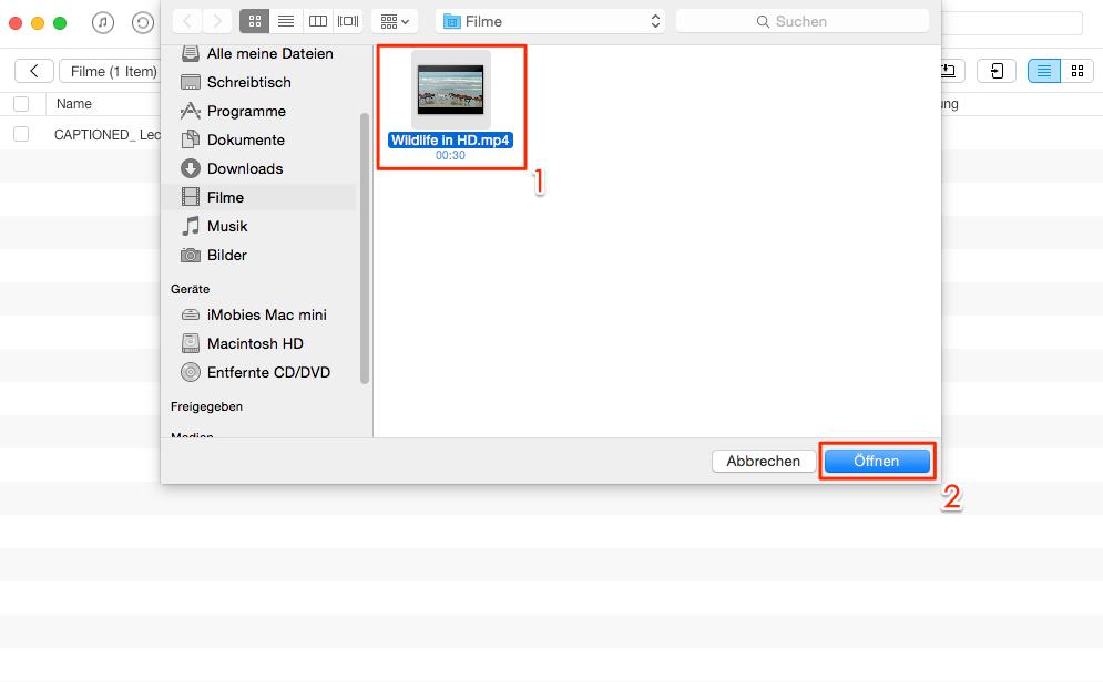 Direkt! Videos und Filme auf iPad übertragen - Schritt 3