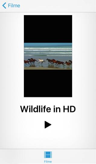 Bilder vom iPhone auf pc ohne iTunes