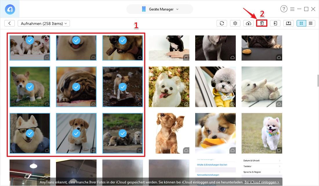 Wie kann ich synchronisierte Fotos vom iPhone löschen - Schritt 3