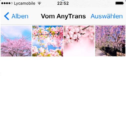 Fotos von iPhoto auf iPhone übertragen