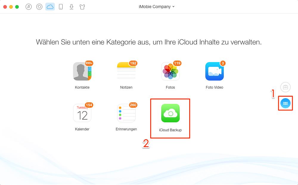 iCloud-Backup zugreifen und auswählen - Schritt 2