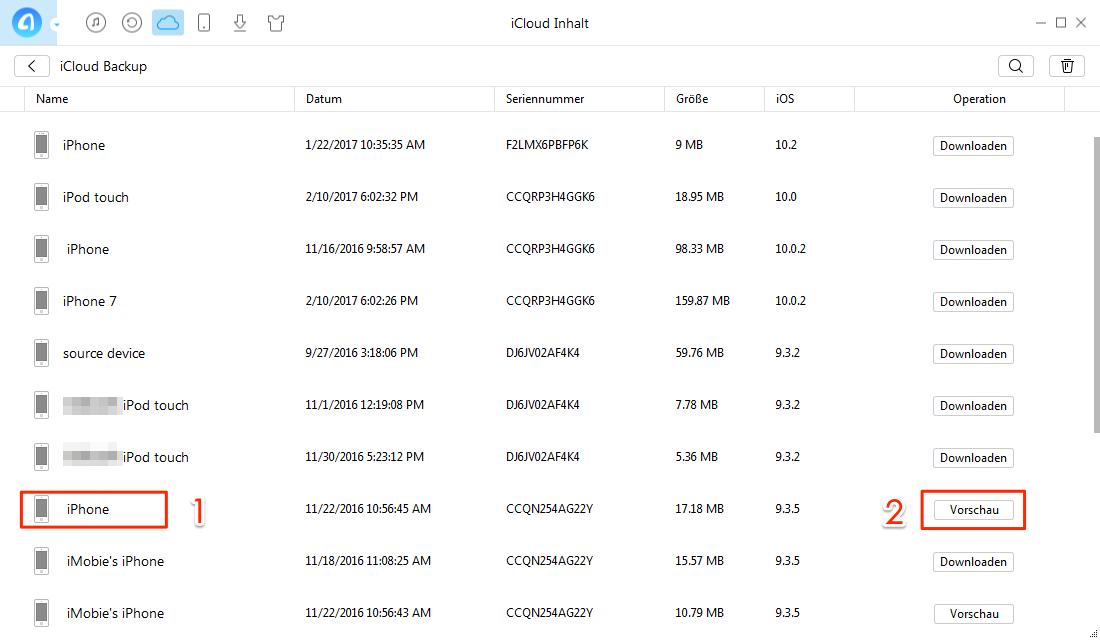 iCloud Backup und Gerät auswählen – Schritt 3