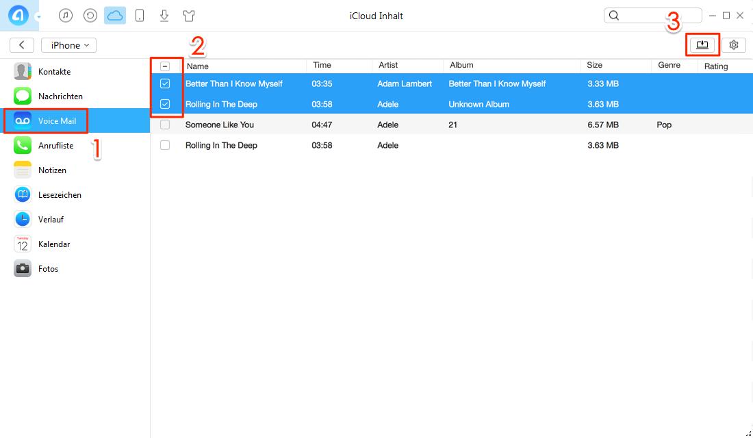Selektiv: iCloud Voicemail exportieren – Schritt 4