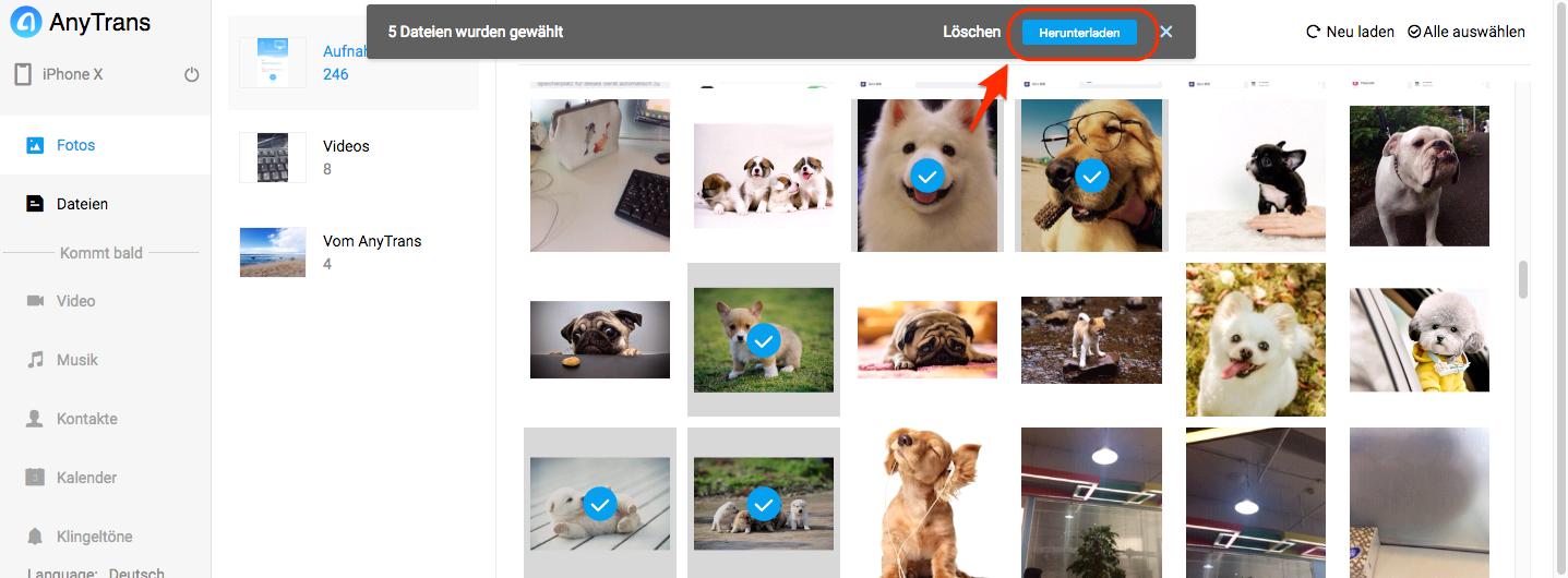 Wie kann man Fotos vom Mac auf iPhone übertragen – Schritt 4