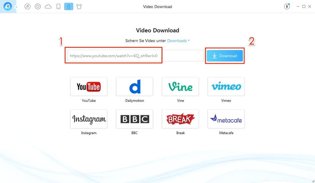 URL der YouTube Videos eingeben oder direkt suchen - Schritt 2