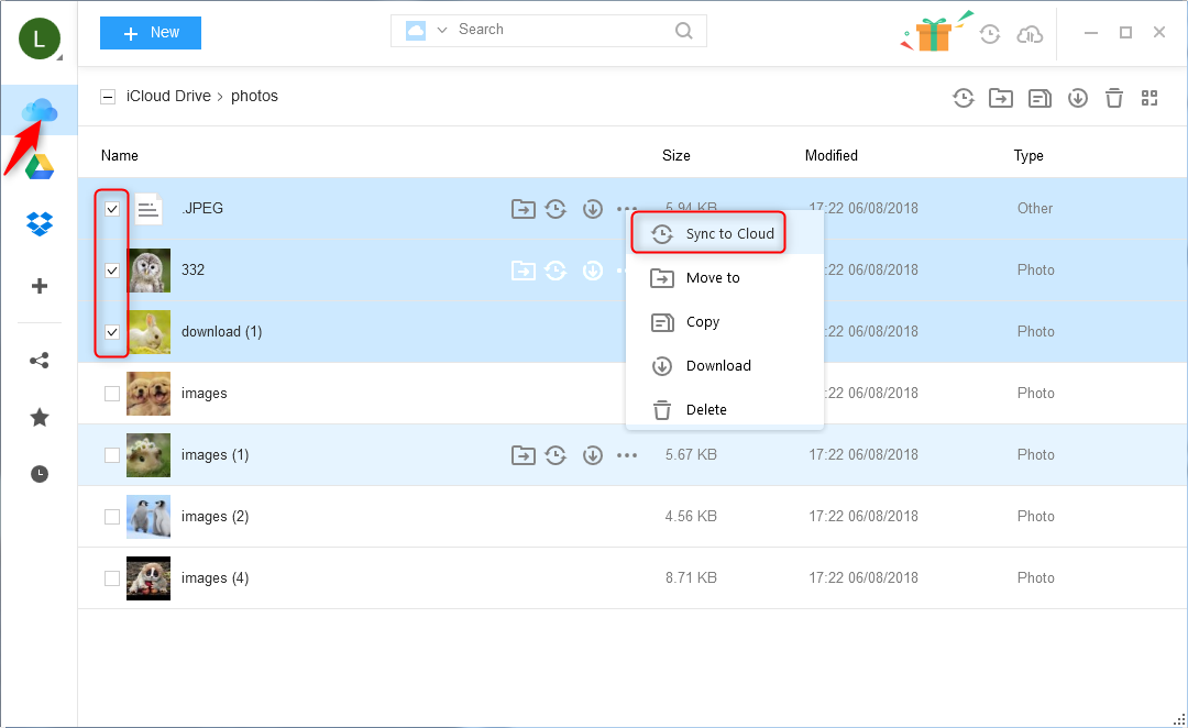 How to Transfer Photos from iCloud to Dropbox Easily – Step 2