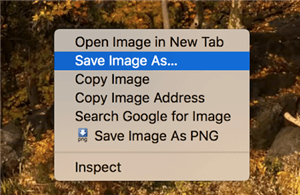Save HEIC image as JPG from Google Photos