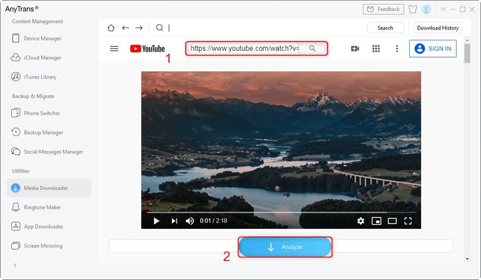 Copy and Paste the URL of a Specific Video