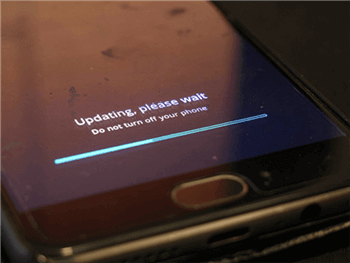 Flash ROMs Using the Bootloader